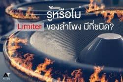 Limiter Speaker