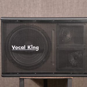 Vocal King 110S